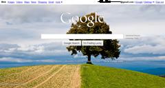 own backgorund image on Google homepage