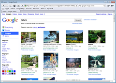 old Google Image layout with Old Google Image Search Safari extension