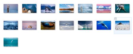 arctic Windows 7 theme