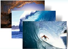 surfing theme