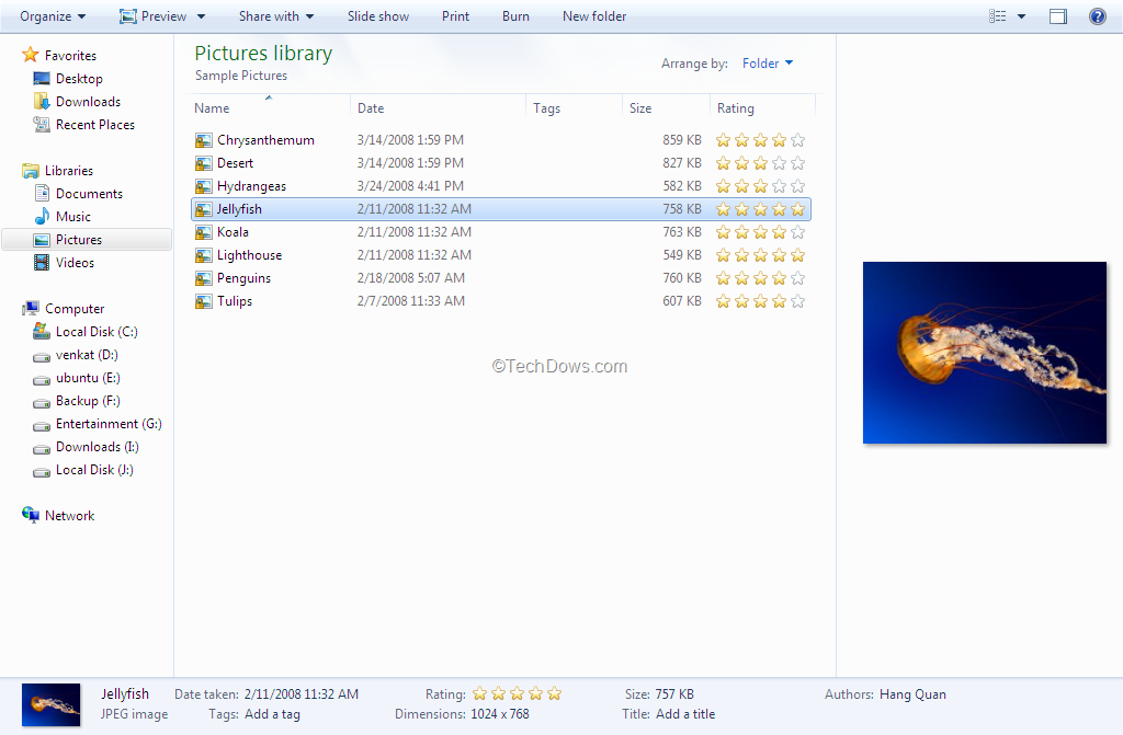 Windows 8 Details Pane and Preview Pane Can't be Shown at