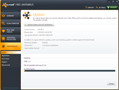avast 6 or 7 program update hangs