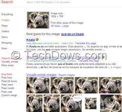 visually similar images shown by Google Search by Image