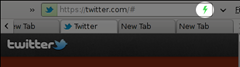SPDY indicator shown in URL bar of Firefox browser