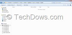 google update folder empty