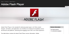 flash player 11.3.300.262