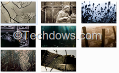 Creepy Cobwebs Theme wallpapers