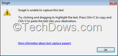 Snagit text capture error