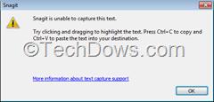 Snagit text capture error