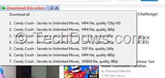 IDM download panel