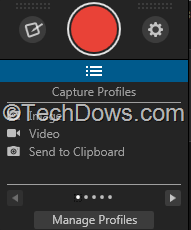 Snagit capture window
