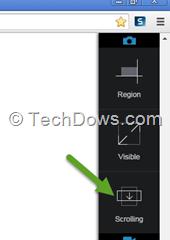 Snagit Chrome scrolling capture option