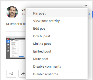 Google Plus Profile Pin Post option