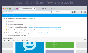 Firefox with new awesome bar design