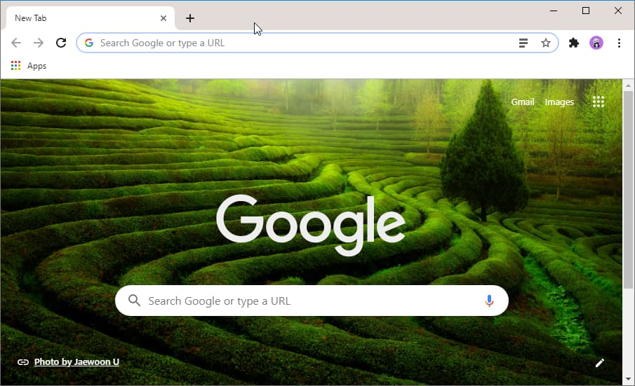 Chrome can now automatically change the New Tab Page background